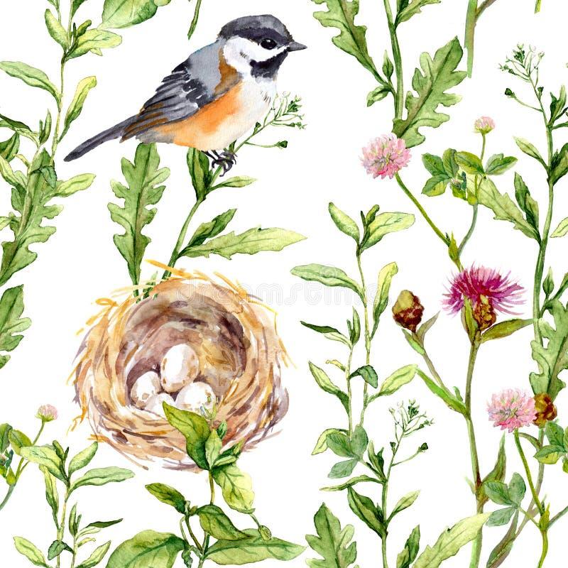 Patroon met kruiden, vogel en nest Naadloze waterverf royalty-vrije stock foto's