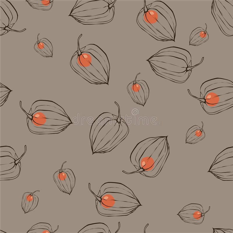 Patroon met vruchten Physalis stock illustratie
