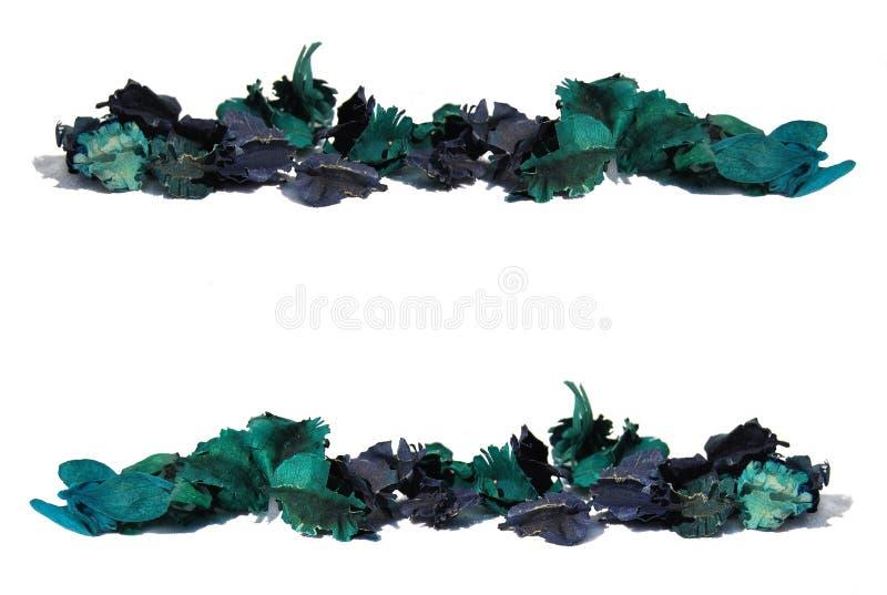 Patroon van een strook van groene bladeren royalty-vrije illustratie