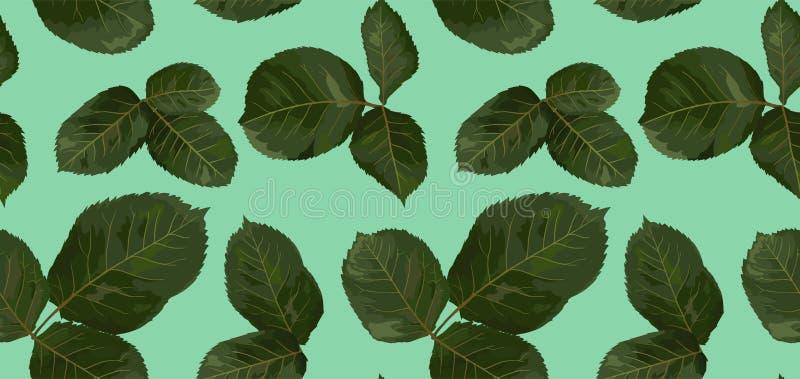 Patroon van groene bladeren van roze, waterverf Botanische illustrat royalty-vrije illustratie