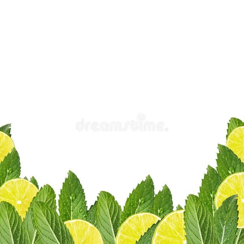 Patroon van muntbladeren en citroenplakken stock foto