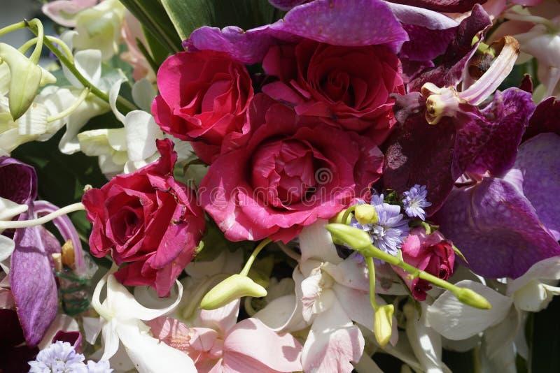 Patroon van natuurlijke bloementextuur als achtergrond stock afbeeldingen