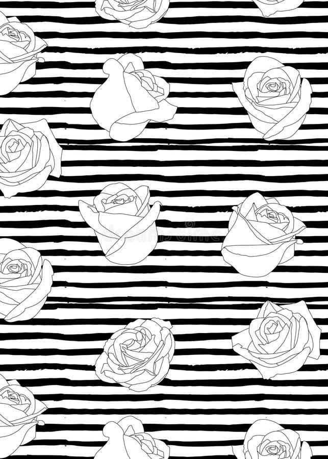 Patroon van rozen witte knoppen van rozen zwarte lijn op een patroon van zwarte die lijnen met verven worden geschilderd stock illustratie