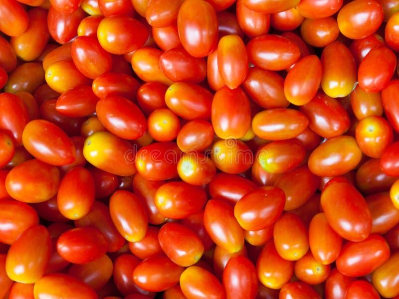 Patroon van verse tomaten stock foto's