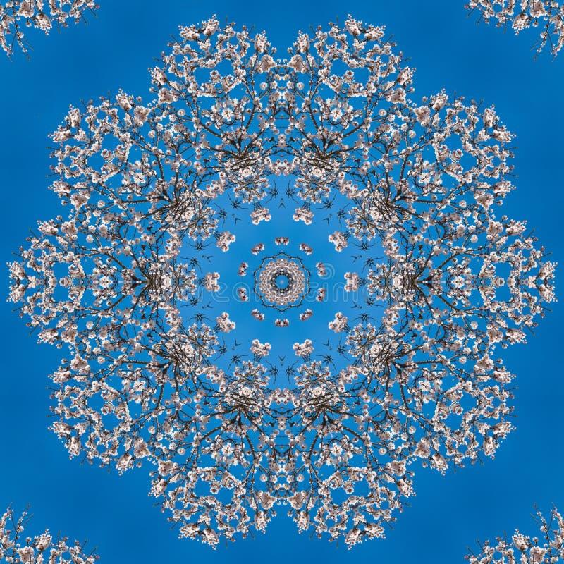 Patroon van witte bloemen van amandel caleidoscoop, mandala vector illustratie