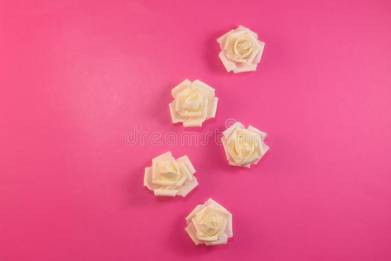 Patroon witte witte rozen op pastelkleur roze achtergrond Vlak leg, hoogste mening royalty-vrije stock fotografie
