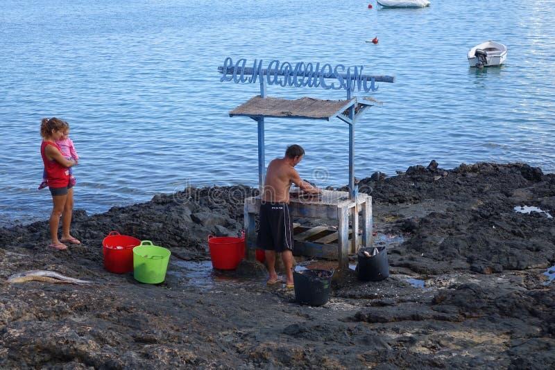 Patroszyć rybią Corralejo schronienia schronienia Fuerteventura starą grodzką puszkę obraz stock