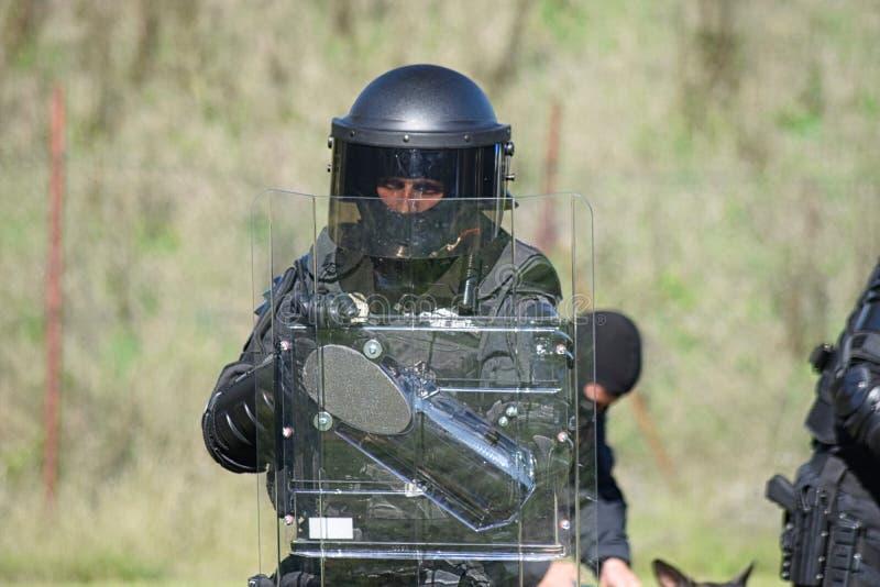 Patrouille rapide de police tchèque de ville image libre de droits