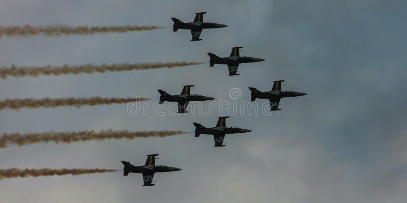 Patrouille suisse aerobatic eskader van de Zwitserse Luchtmacht stock foto