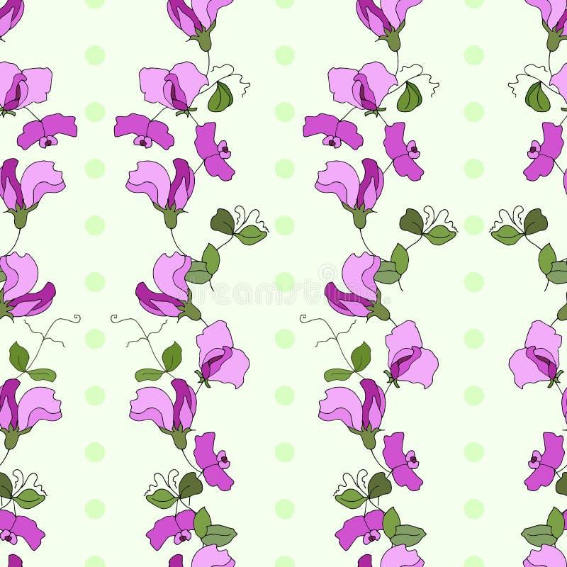 Patt вектора вертикального стиля цветков и листьев сладостного гороха безшовное иллюстрация вектора