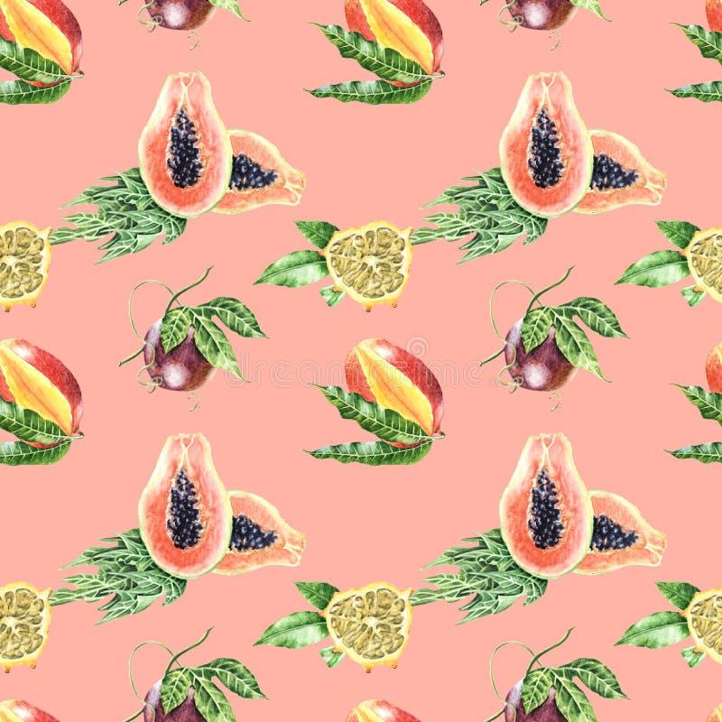 Patt senza cuciture botanico acquerello di frutti tropicali dell'illustrazione illustrazione di stock