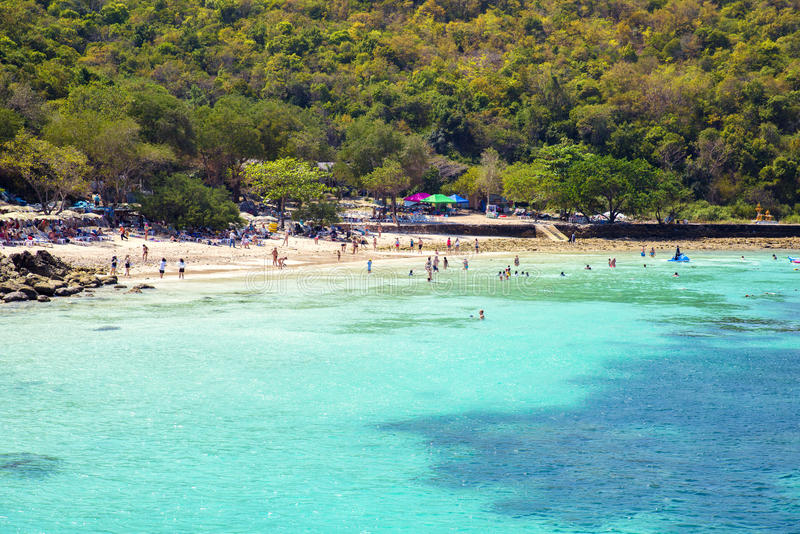 PATTAYA ,JANUARY 13 : Tourists are swimming in the sea of Koh Larn Island beach in Pattaya City royalty free stock images