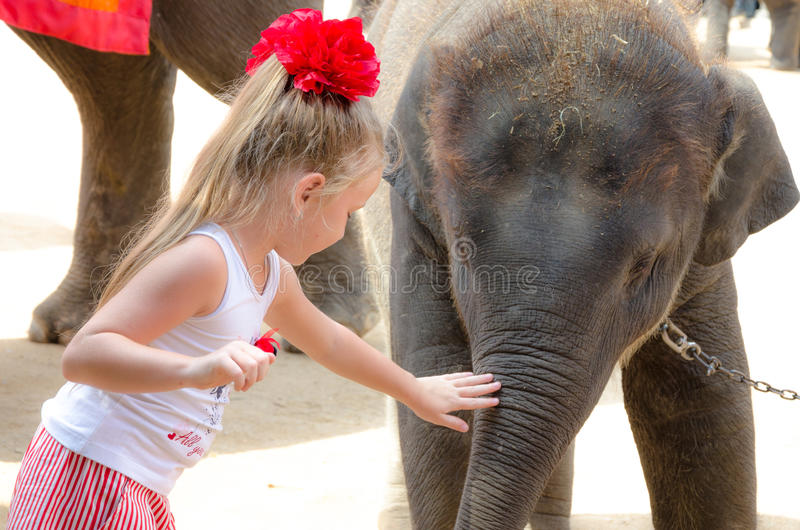 Pattaya, Tailândia: Menina e elefante pequeno. imagens de stock royalty free