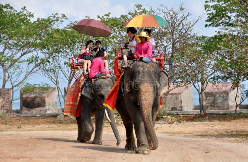 Pattaya, Tailandia: Giri tailandesi dell'elefante del tempiale fotografia stock libera da diritti