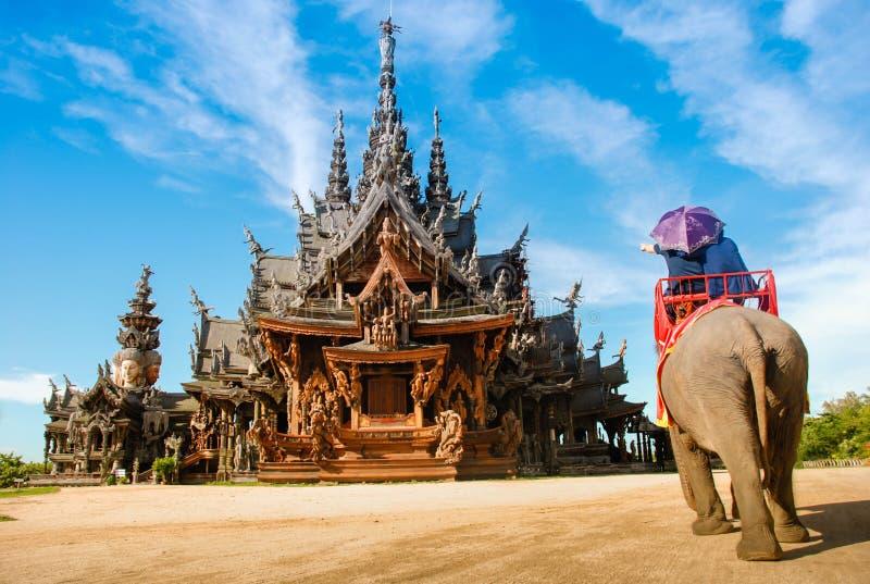 Pattaya, Tailandia: Giri tailandesi dell'elefante del tempiale immagini stock libere da diritti