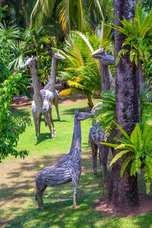 PATTAYA, THAÏLANDE - MARS 2013 : Jardin de Nong Nooch photographie stock