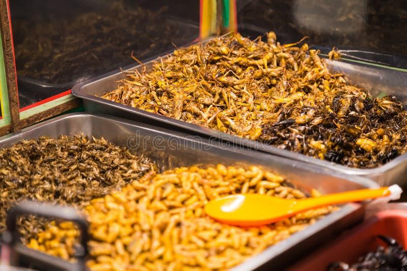 PATTAYA THAILAND - CIRCA AUGUSTI 2015: Stekte kryp som fel, gräshoppor, larver, larver och skorpioner säljs som mat fotografering för bildbyråer