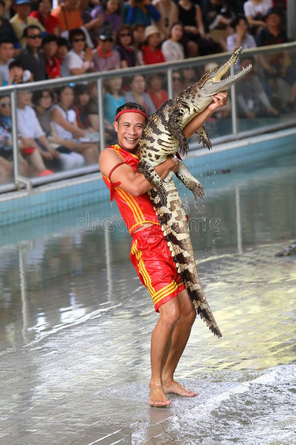 Showman with a young crocodile in the arena in the Kingdom of Thailand royalty free stock photography