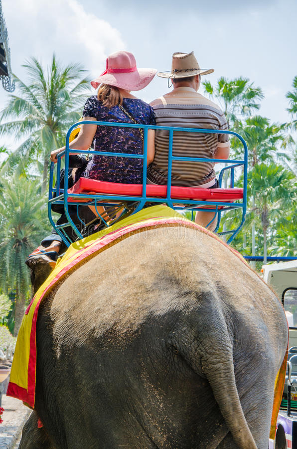 Pattaya, Thailand : Tourists riding the elephant stock images