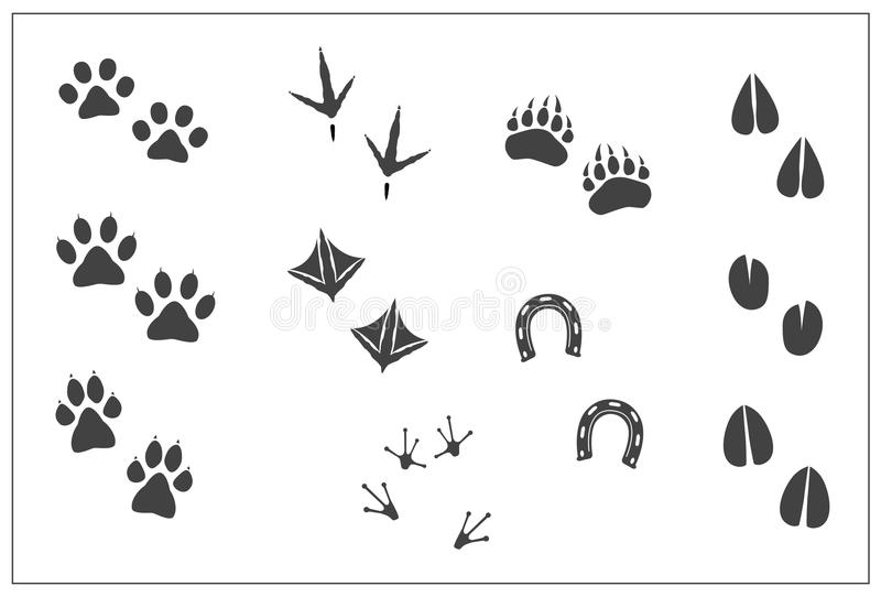 Patte de chat d'empreintes de pas d'animaux, patte de chien, patte d'ours, pieds de poulet d'oiseaux, pieds de canard, fer à chev illustration libre de droits