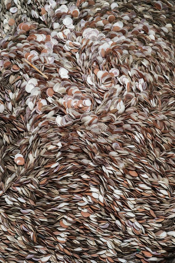 Pattern background of die shellfish. Closeup stock photos