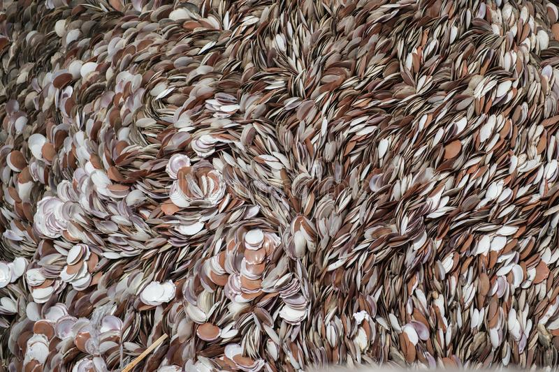 Pattern background of die shellfish. Closeup royalty free stock photography
