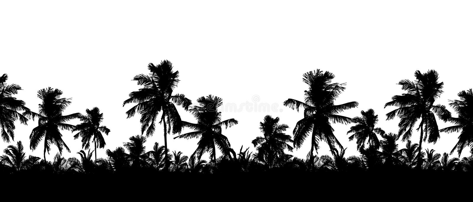 Pattern or background with realistic silhouette of tree tops, tropical palm trees, isolated on white background with space for. Text - vector vector illustration