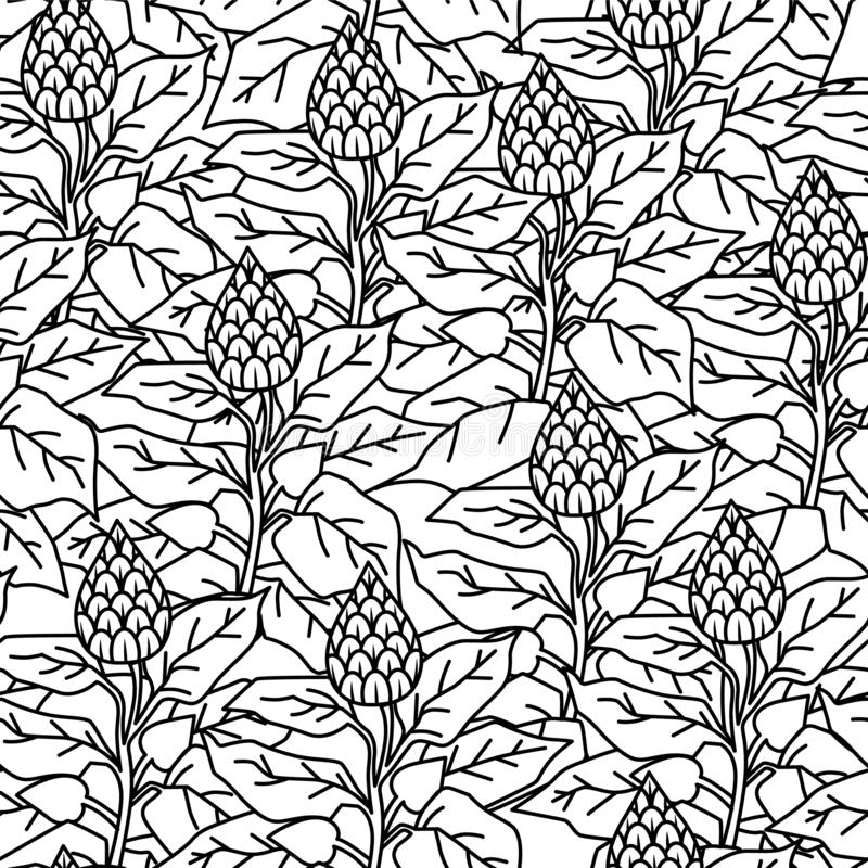 Pattern black and white with foliage and flowers. vector illustration