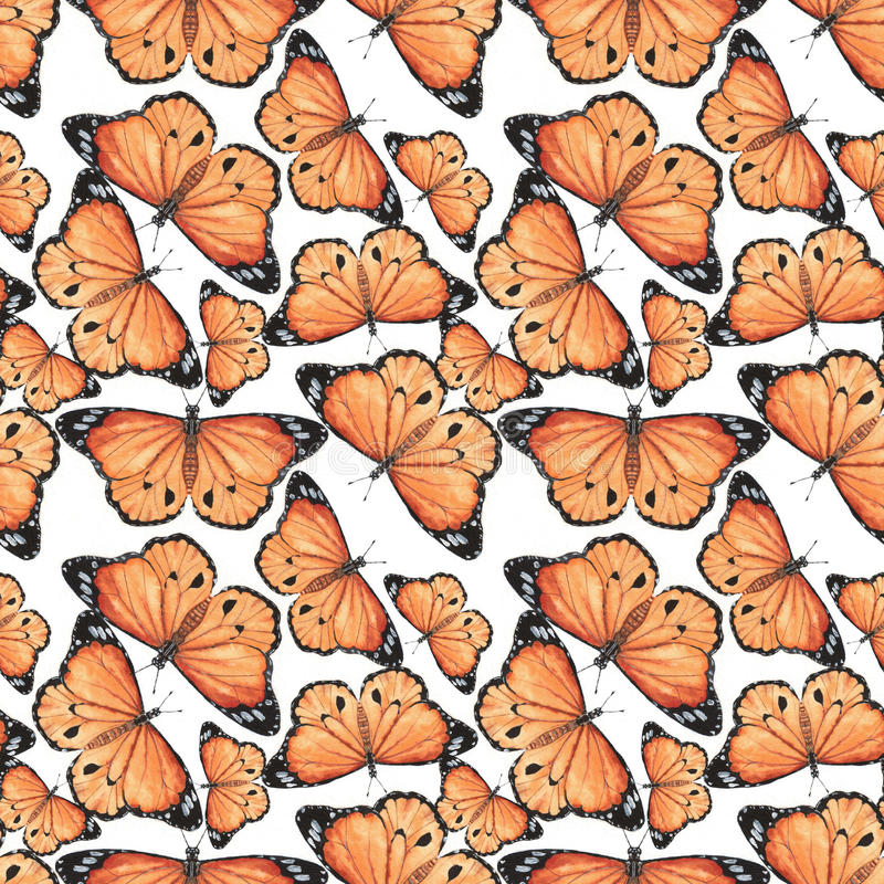 Pattern with butterflies royalty free stock images
