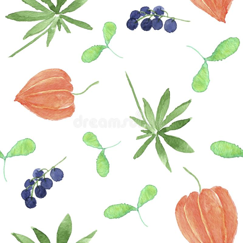 A Botanical pattern of flowers and berries. royalty free stock photo