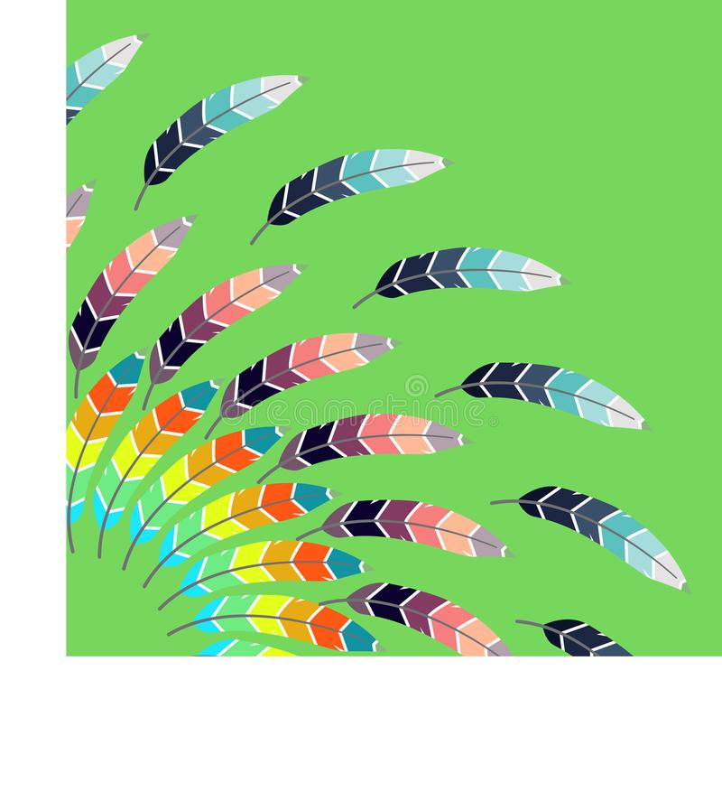 Pattern with colored feathers. On a green background vector illustration