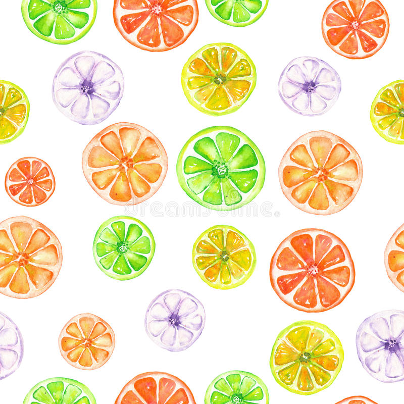 Pattern with colored watercolor candied fruits. Seamless pattern with colored candied fruits painted in watercolor on a white background vector illustration