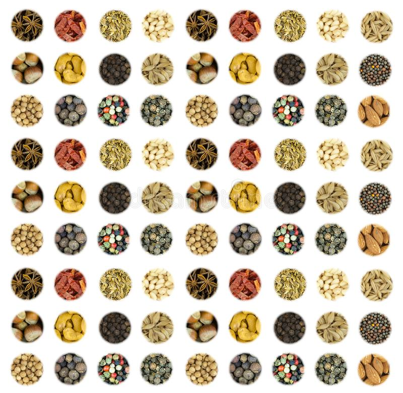 Pattern culinary set a series of round icons of spices base vertical base dry pod chili peas zira seeds coriander star anise and n royalty free stock photo