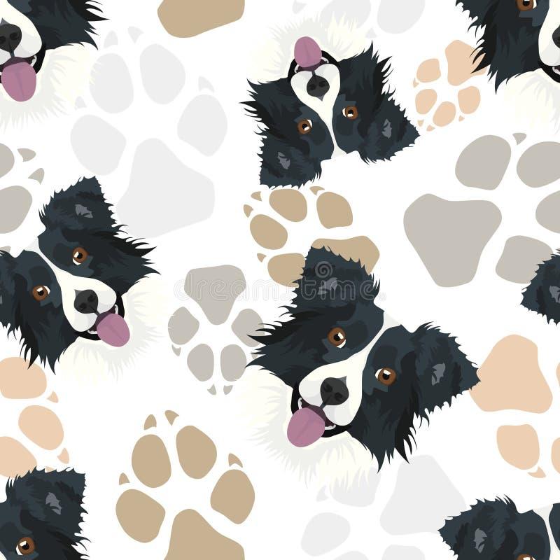 Pattern Dog Paws Border Collie vector illustration