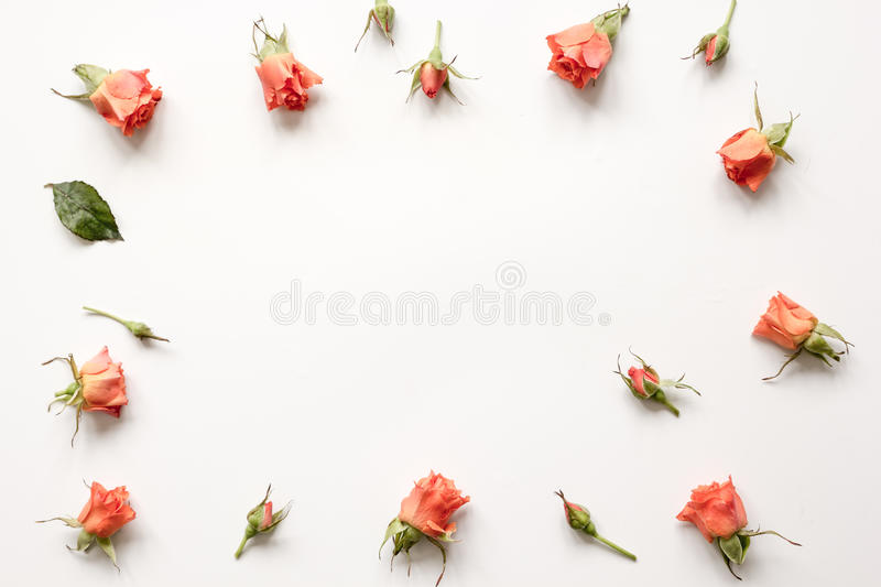 Pattern of flowers on white background top view mock up.  stock photography