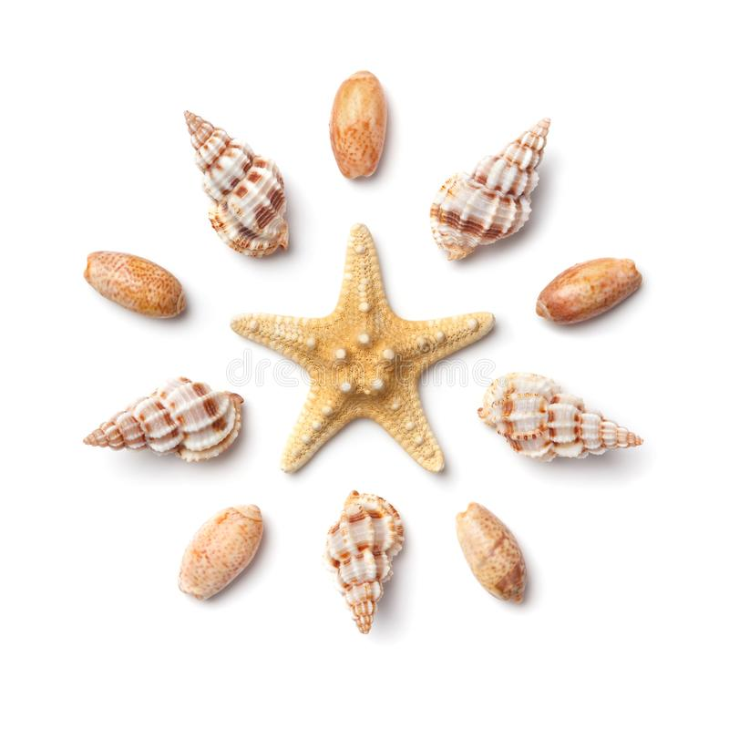 Pattern in the form of a circle of sea shells and starfish isolated on a white background. Pattern in the form of a circle of sea shells and starfish, isolated stock photos