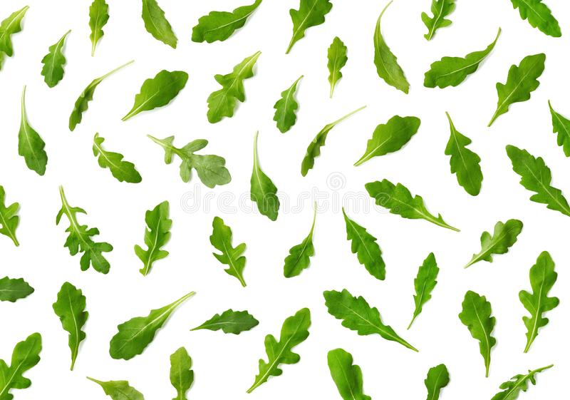 Pattern of fresh arugula or rucola salad leaves. Isolated on white background. Top view royalty free stock photography