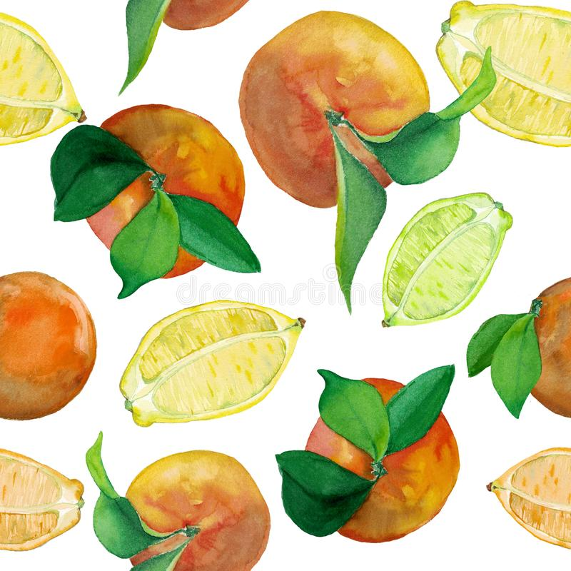 Pattern of fresh citrus fruits- lemon and oranges. Watercolor seamless pattern of fresh citrus fruits- lemon and oranges. Fruits with leaves and cut in the vector illustration