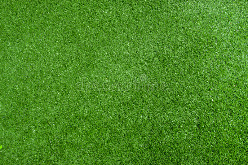 Pattern of fresh green lawn royalty free stock image