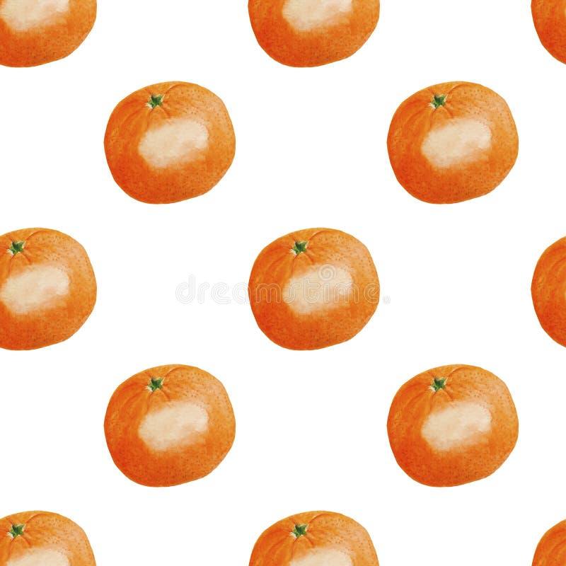 Pattern Fruits Citrus Mandarin Watercolor illustration Tropics food Digital paper Textile set Summer botanical spring decor Desig. Illustration Pattern Fruits vector illustration