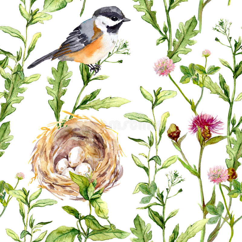 Pattern with herbs, bird and nest. Seamless watercolor royalty free stock photos