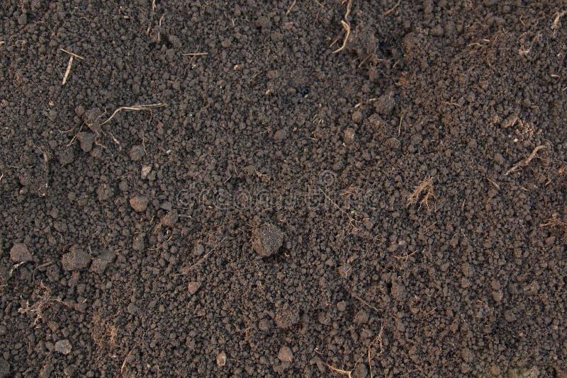 Pattern of humus soil. Pattern of rich humus soil stock photo