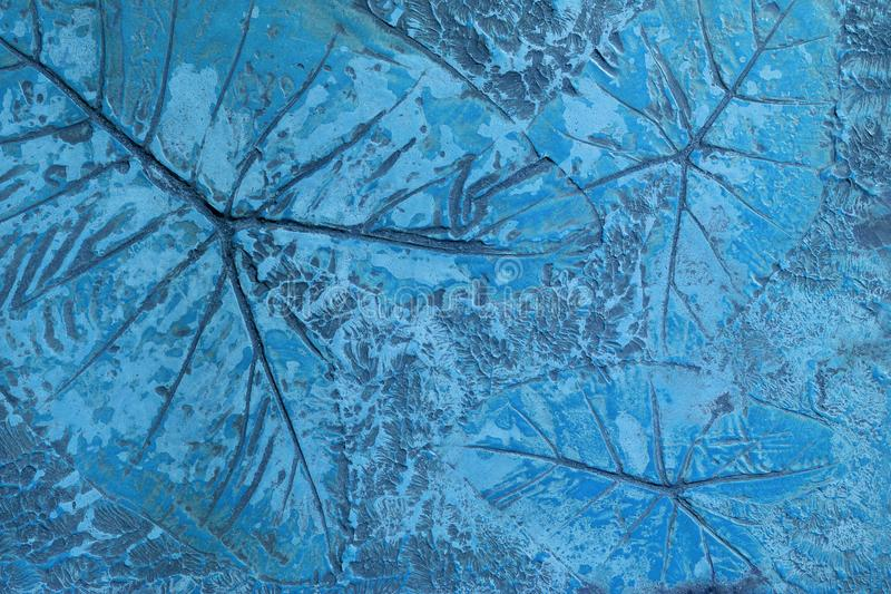 Pattern of leaf stamped on blue pastel concrete pavement for decorate walkways in the garden royalty free illustration
