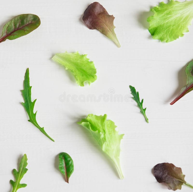 Pattern with lettuce for the background on the site. Salad greens and dietary products. Proper nutrition and vegetarianism. Pattern with lettuce for the royalty free stock images