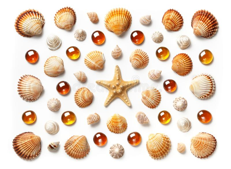 Pattern made of shells, starfish and orange glass beads isolated on white background. Flat lay, top view royalty free stock photos
