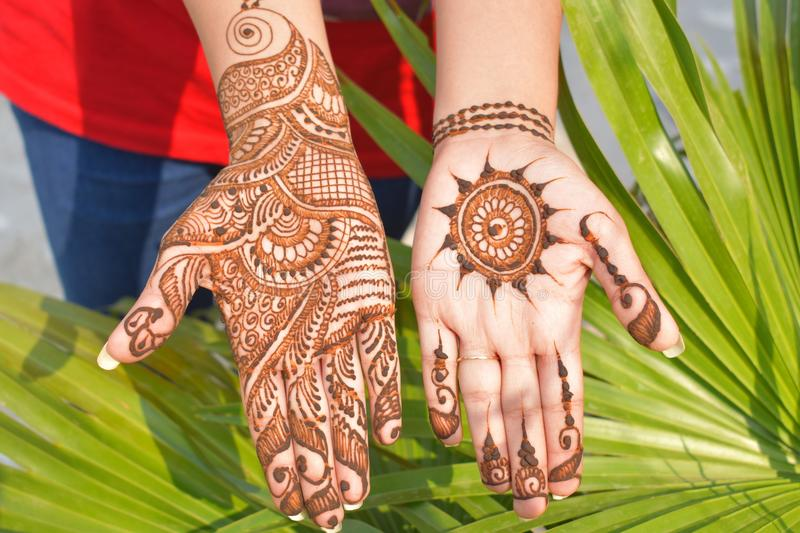 Pattern, Mehndi, Design, Henna royalty free stock photos