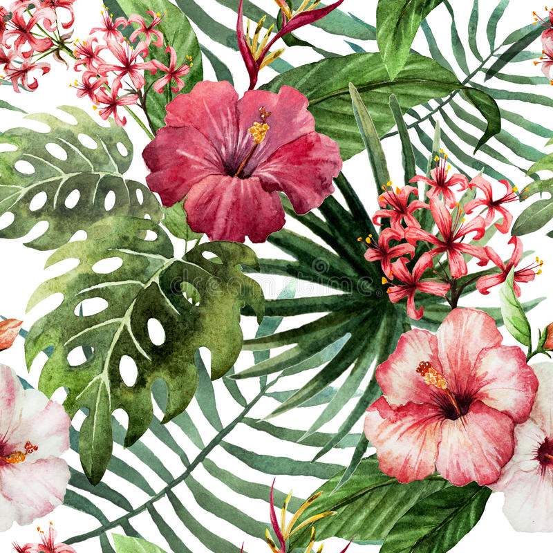 Free Pattern Orchid Hibiscus Leaves Watercolor Tropics Stock Image - 47666571