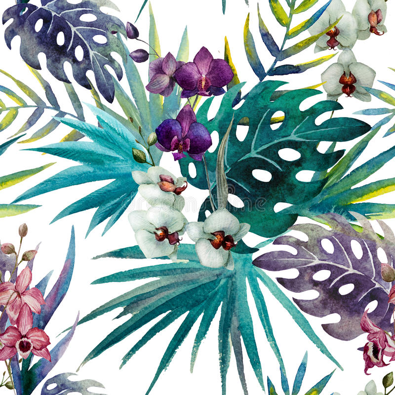 Free Pattern Orchid Hibiscus Leaves Watercolor Tropics Royalty Free Stock Image - 47666586