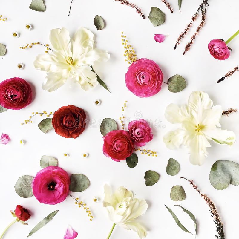 Pattern with pink and red roses or ranunculus, white tulips and green leaves on white background. Flat lay, top view stock images