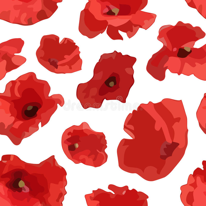Pattern of poppy. Vector seamless pattern of poppy stock illustration